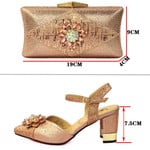 Zapatos y bolso de boda africanos para mujer, conjunto de zapatos y bolso a juego