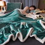 Flannel Blankets (FREE SHIPPING + 50% discount only today)