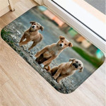 Pet Door Mat (FREE SHIPPING + 50% Off Today Only)