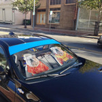 Gearhumans 3D Bulldog 04 Custom Car Auto Sunshade
