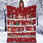 Pitbull - Christmas Blanket