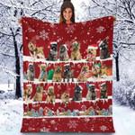 Cairn Terrier - Christmas Blanket