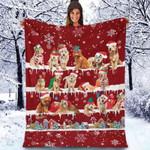 Goldendoodle - Christmas Blanket