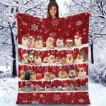 Pomeranian - Christmas Blanket