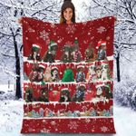 Sproodle - Christmas Blanket