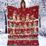 Berger Picard - Christmas Blanket