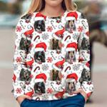 Afghan Hound - Xmas Decor - Premium Sweatshirt
