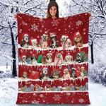 Havanese - Christmas Blanket