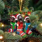 Irish Water Spaniel Christmas Socks Ornament