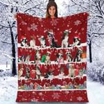 Border Collie - Christmas Blanket