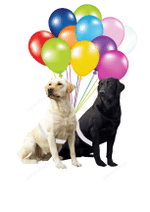 Two Labrador Dogs Fly With Bubbles Hanging Ornament-2D Effect