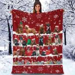 Newfoundland - Christmas Blanket