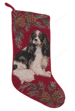 Needlepoint Christmas Dog Breed Stocking -Cavalier King Charles Tri-Color With Pinecone Border