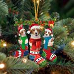 Kooikerhondje Christmas Socks Ornament
