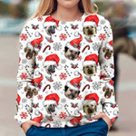 Anatolian Shepherd - Xmas Decor - Premium Sweatshirt