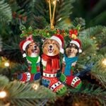 Rough Collie Christmas Socks Ornament