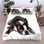 Boston Terrier Sleep Printed Bedding Set Bedroom Decor