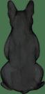 French Bulldog black